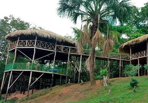 アマゾン ツパナ ロッジ