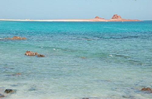 ソコトラ島 ディハムリ海洋