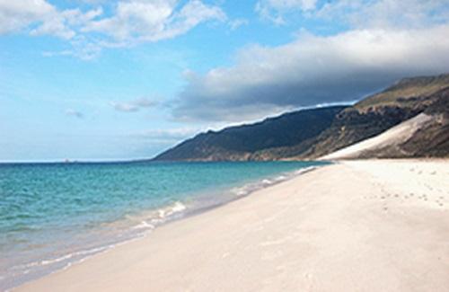 ソコトラ島 ディレシアビーチ